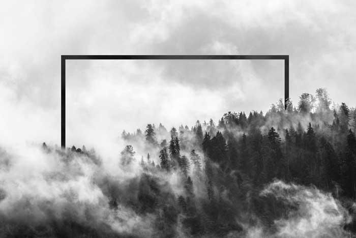 Wald mit geometrischer Form - Geometrische Kunst